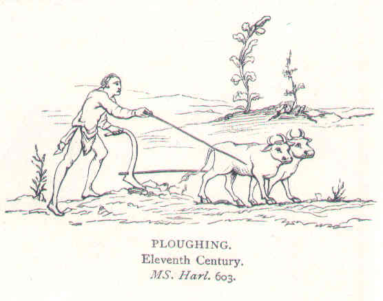 11th Century drawing ploughing